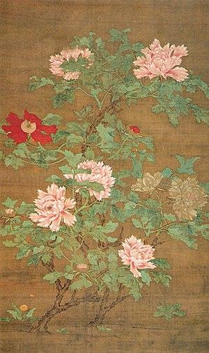 Paeonia suffruticosa - Tree Peony by Zhao Chang