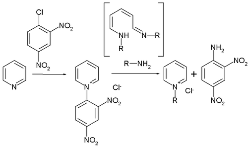 The Zincke reaction
