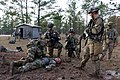 """""""Can Do"""" Soldiers conduct STX for China Focus 170119-A-GF301-098.jpg"""