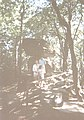 (PL) Polska - Beskid Sądecki - Diabelski Kamień - Devil's Stone (VIII.1995) - panoramio.jpg