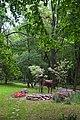 Ботанічний сад НУБіП DSC 0521.jpg