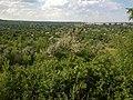 Вид на город с задернованных отвалов - panoramio (5).jpg