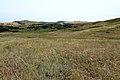 Вид со склона горы в сторону села Новосёлки - panoramio.jpg