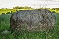 Вялікі камень падсосенскі. Муляры (02).jpg