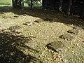 Галянова. Могілкі Першай сусветнай (01).jpg