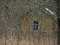 Домик в кустах - panoramio.jpg