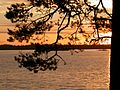 Пунозеро, закат 3 - panoramio.jpg