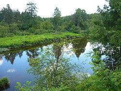 Река Серга.JPG