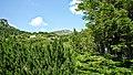 Рила-по долината на р.Ражавица - panoramio.jpg