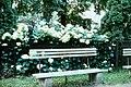 Скамейка на лужайке у сада им. П.И.Травникова..jpg