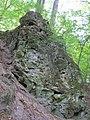 Скеля Тимоша біля Крехівського монастиря.JPG