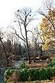 Університетський ботанічний сад ім. академіка Фоміна О. В. 0912.JPG