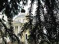 Успенский собор в городе Мышкене увиденный сквозь хвою.JPG