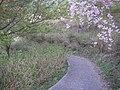 うつぶな公園 - panoramio (23).jpg