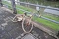 从河底捞上来的共享单车 20190601 171208.jpg