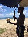卖椰子的人.jpg