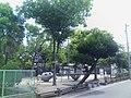 吉島第1公園 - panoramio.jpg