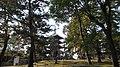 奈良 - panoramio (8).jpg