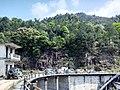 新丰司茅坪林场20150412 - panoramio (2).jpg