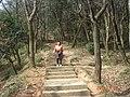 杭州. 登将台山(-月岩) - panoramio (1).jpg