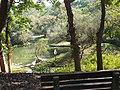 水域生態區 Water Plants Area - panoramio.jpg