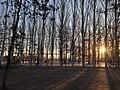 烏素圖公園 - panoramio (14).jpg