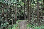 白岩の滝 - panoramio (18).jpg