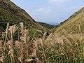 草嶺古道 Caoling HistoricTrail - panoramio.jpg