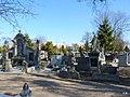 - Cmentarz Nowofarny - panoramio (23).jpg
