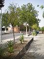 000686 - Alcalá de Henares (3005374515).jpg