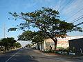 05787jfCity San Fernando Bulacan Welcome Highways Pampangafvf 11.JPG