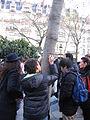 11 janvier 2015 Abords de la marche republicaine Paris 2 Inscription Nous sommes Charlie.JPG