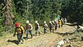 170714-FS-ShastaT-JD-001-YCC field day of Basic32Wildland Fire-JonDove (37084068600).jpg