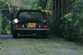 1981 Alfa Romeo Spider 2000 (8881180961).jpg