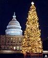 1991 U.S. Capitol Christmas Tree (31657784152).jpg