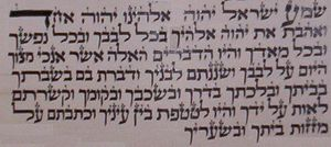 Shema Yisrael - The first paragraph of the Shema seen in a Tefillin scroll