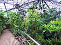 20050416 100 0435 1600 - panoramio.jpg