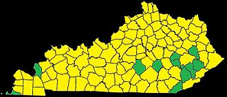 2010 United States Senate election in Kentucky - Counties carried by Paul are in Yellow; counties carried by Grayson are in green.