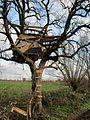20121215Baumhaus Hockenheim1.jpg