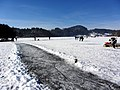 2012 'Seegfrörni' - Türlersee - Hausen am Albis 2012-02-18 13-17-21 (SX230).JPG