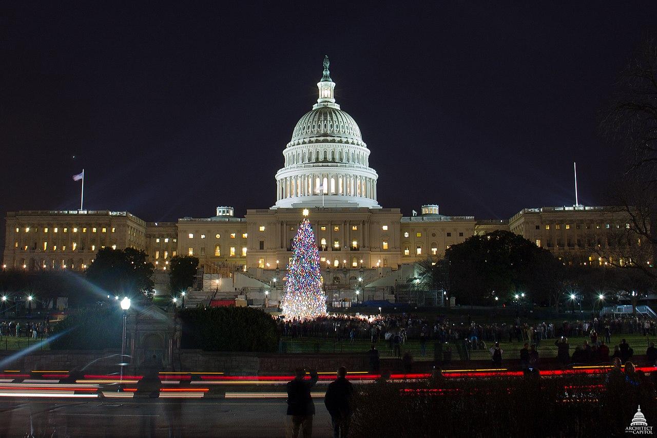 File:2012 Capitol Christmas Tree (8246035000).jpg