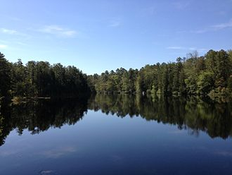 Brendan T. Byrne State Forest - Pakim Pond in Brendan T Byrne State Forest
