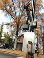 2013-11-22 User Specious on crosswalk signal.jpg