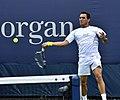 2013 US Open (Tennis) - Qualifying Round - Victor Estrella Burgos (9754489081).jpg