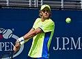 2017 US Open Tennis - Qualifying Rounds - Peter Polansky (CAN) (20) def. Blaz Rola (SLO) (36932650561).jpg