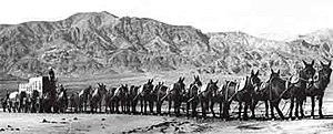 20 Mule Team Borax - 20 Mule Team in Death Valley