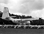 24.05.65 Le Bréguet 941 à atterrissage court en Forêt de Bouconne (1965) - 53Fi2251.jpg