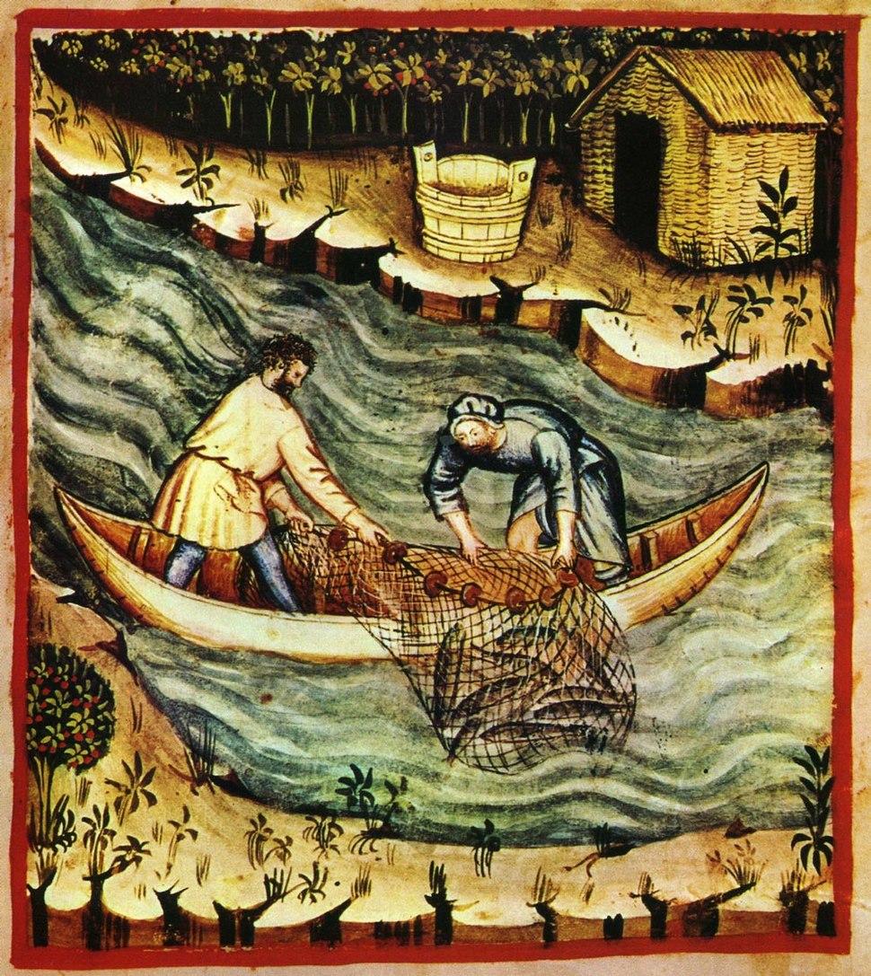 36-pesca,Taccuino Sanitatis, Casanatense 4182.