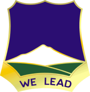 120th Infantry Brigade (United States) - Image: 382 Inf Rgt DUI
