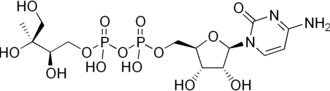 Non-mevalonate pathway - Image: 4 diphosphocytidyl 2 C methylerythritol